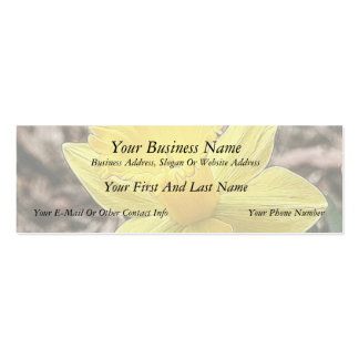 Springtime Yellow Daffodil Double-Sided Mini Business Cards (Pack Of 20)