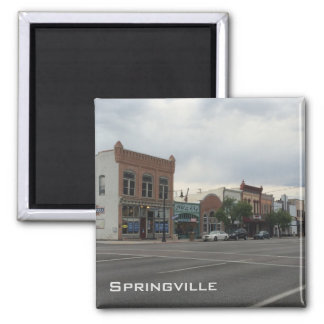 Springville Magnet