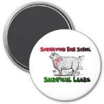 Springwood Lambs Magnet