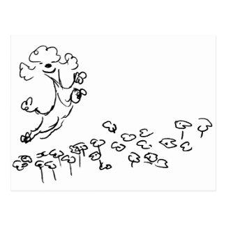 Springy Poodle Postcard