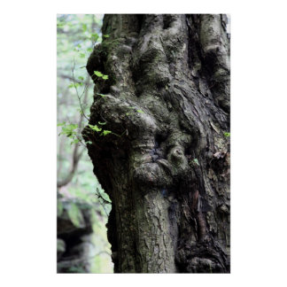 sprite de madera póster