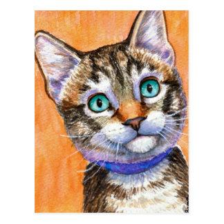 Sprite Tabby Cat Postcard