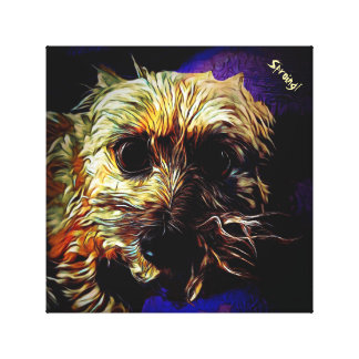 """Sproing! 12"""" Square Canvas Print"""