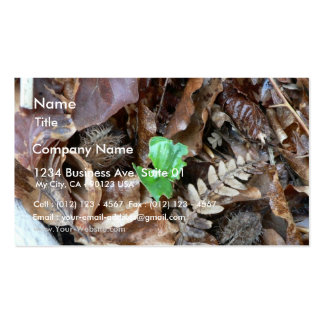 Sprout Amoungst Dead Leaves Business Card