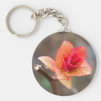 sprout in spring basic round button keychain