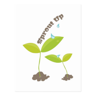 Sprout Up Postcard