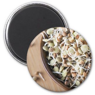 Sprouted Lentils Refrigerator Magnet