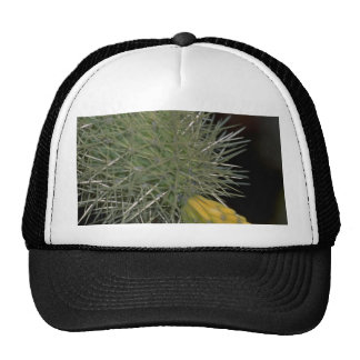 Sprouting Buds Hat