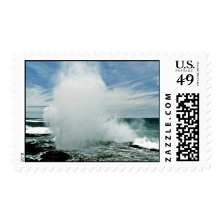 Sprouting Horn - Kauai Postage Stamp