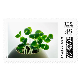 Sprouting Postage