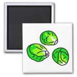 Sprouts 2 Inch Square Magnet