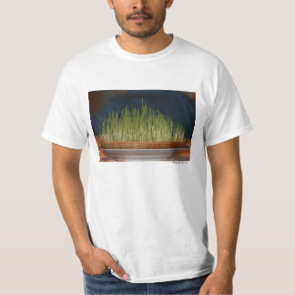 Sprouts Shirts