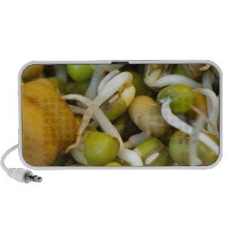 Sprouts - very healthy food notebook speakers