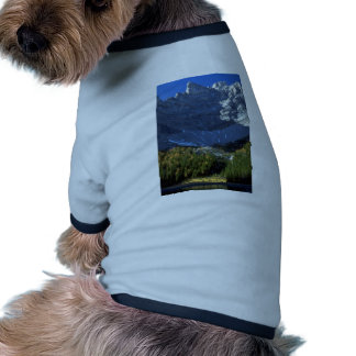 Spruce and tamarack forest below Tombstone Mountai Pet Clothes