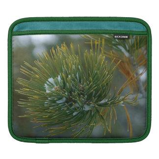 Spruce Bough Rickshaw iPad Sleeve