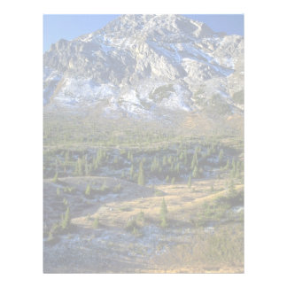 Spruce Forest and Mount Rae, Alberta, Canada Customized Letterhead