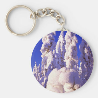 Spruce forest in midwinter key chain
