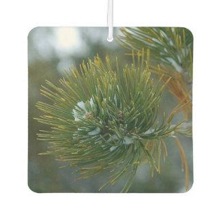 Spruce Tree Bough Air Freshener