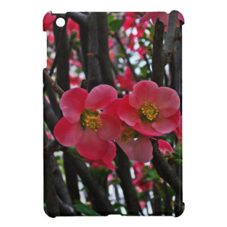 Sprung Spring Blossoms iPad Mini Cases
