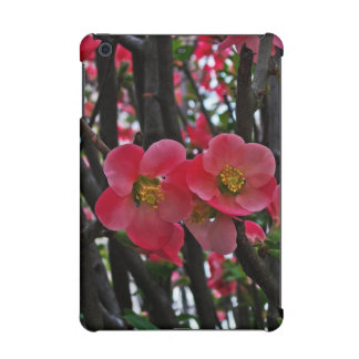 Sprung Spring Blossoms iPad Mini Covers