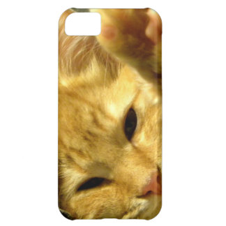 Spud iPhone 5C Cover
