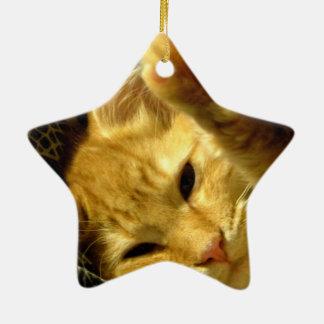 Spud Ceramic Ornament