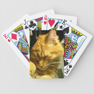 Spud Snuggle Bicycle Playing Cards