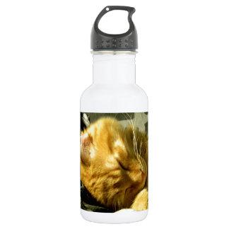 Spud Snuggle Water Bottle