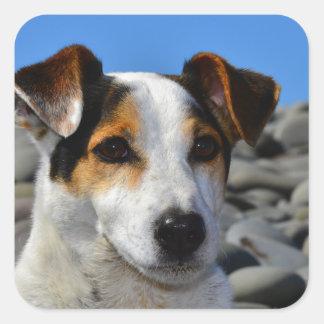 Spud The Dog Square Sticker
