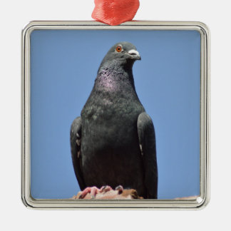 Spud the pigeon metal ornament