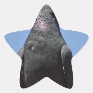 Spud the pigeon star sticker