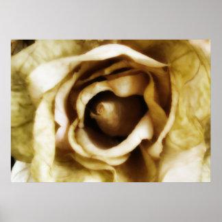 Spun Gold - Silk Rose Poster