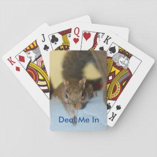Spunky cards