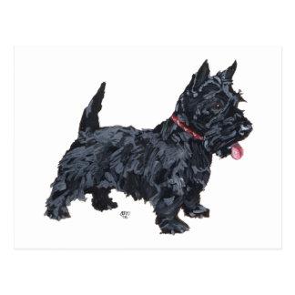 Spunky Scottie Dog Postcard