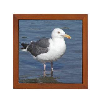 Spunky Wading Seagull Desk Organizer