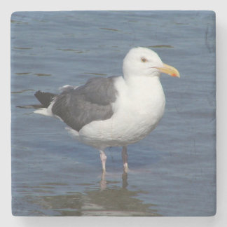 Spunky Wading Seagull Marble Coaster
