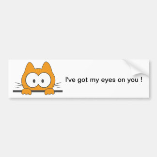 Spy cat bumper sticker