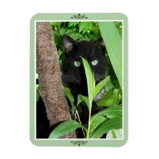 """""""Spy in the Garden"""" Photomagnet Magnet"""