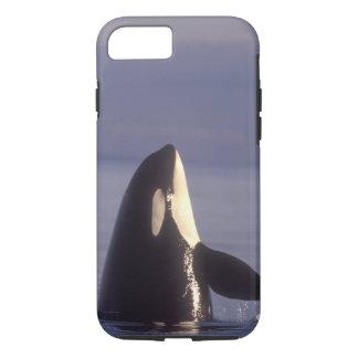 Spyhopping Orca Killer Whale (Orca orcinus) near iPhone 7 Case