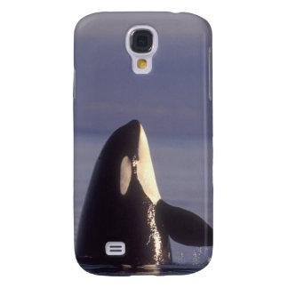 Spyhopping Orca Killer Whale (Orca orcinus) near Samsung S4 Case