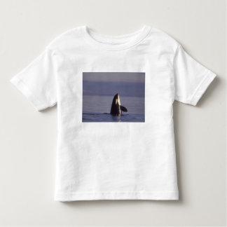 Spyhopping Orca Killer Whale (Orca orcinus) near Toddler T-shirt