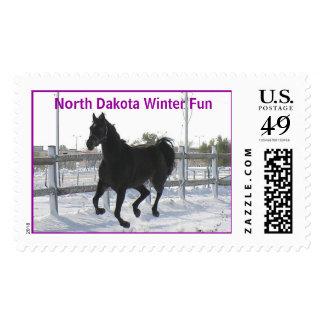 SQ Oct Snow Storm 20, North Dakota Winter Fun Postage Stamp