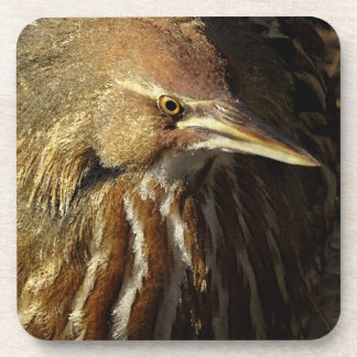 Squacco Heron Bird Wildlife Animal Refuge Beverage Coaster