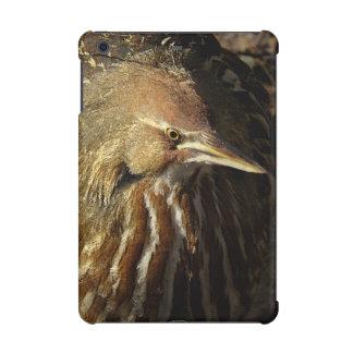 Squacco Heron Bird Wildlife Animal Refuge iPad Mini Cover