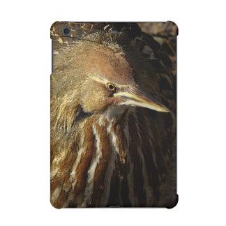Squacco Heron Bird Wildlife Animal Refuge iPad Mini Retina Cover