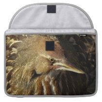 Squacco Heron Bird Wildlife Animal Refuge MacBook Pro Sleeve