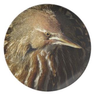 Squacco Heron Bird Wildlife Animal Refuge Plate