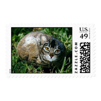 """""""Squall"""" cat rock stamp"""