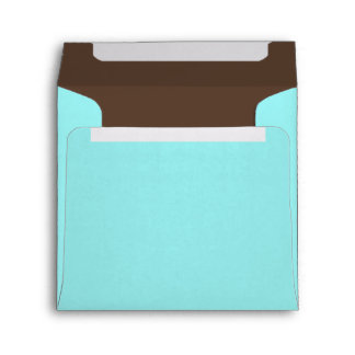 Square Blue and Brown Color Combo Envelopes