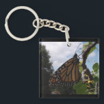 "Square (Double Sided) Keychain,Monarch Style #2-2b Keychain<br><div class=""desc"">Save The Monarch Butterfly.</div>"